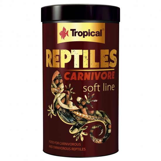 Tropical Reptiles Carnivore Soft