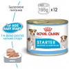 Royal Canin Starter Mousse Mother & Babydog 195 гр