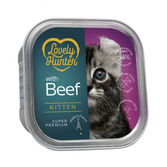 Lovely Hunter Kitten with Beef