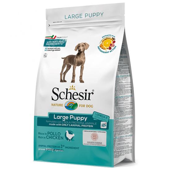 Schesir Dog Large Puppy