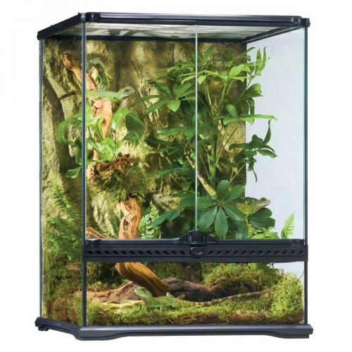 Тераріум Exo Terra скляний «Natural Terrarium» 45х45х60 см