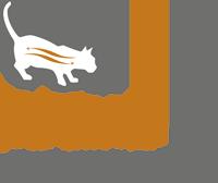 сбалансированный рацион, содержит специально подобранное соотношению белков, жиров и углеводов, благодаря чему привередливые кошки ощущают воздействие молекул протеина  на рецепторы в ротовой полости, что способствует лучшему восприятию продукта кошкой