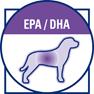 Эйкозапентаеновая и докозагексаеновая Омега 3 жирные кислоты (EPA и DHA) помогают регулировать кожные реакции, а также обеспечивают целостность клеток слизистой оболочки кишечника.