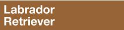 Полнорационный корм для щенков породы лабрадор ретривер в возрасте до 15 месяцев.