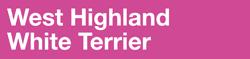 Полнорационный корм для собак породы вест-хайленд-уайт-терьер в возрасте старше 10 месяцев