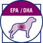 Длинноцепочечные Омега 3 (EPA и DHA) жирные кислоты, регулируют кожные реакции.